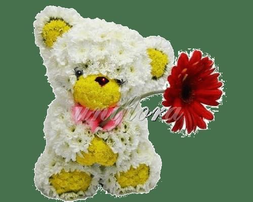 Принес цветочек