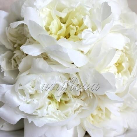 Букет цветов в вазе - allWomens 68