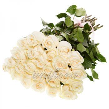 Букет из 25 белых роз (импорт)
