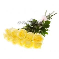 Букет из 11 желтых роз (импорт)