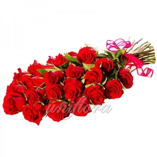 Букет из 25 красных роз (импорт)