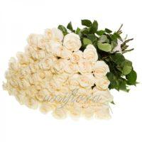 Букет из 49 белых роз (импорт)