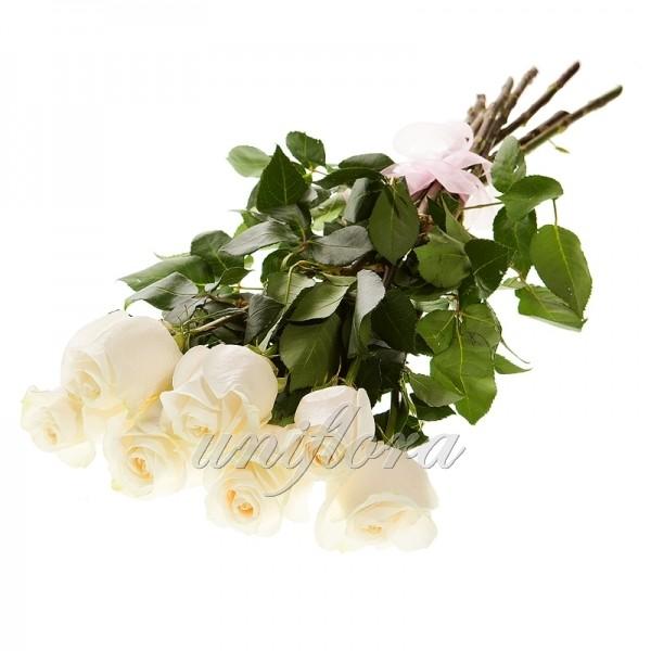 Букет из 7 белых роз (импорт)