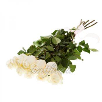 Букет из 9 белых роз (импорт)