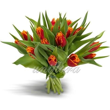 Букет из 19 оранжевых тюльпанов