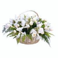 Корзина с 51 белым тюльпаном и ирисом