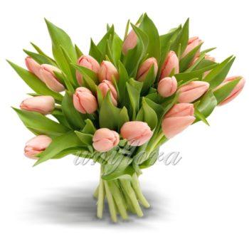 Букет из 25 персиковых тюльпанов