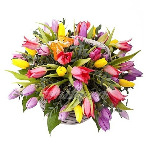 Корзина с 57 тюльпанами 3х цветов