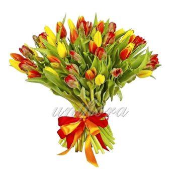 Букет из 45 желтых и красных тюльпанов