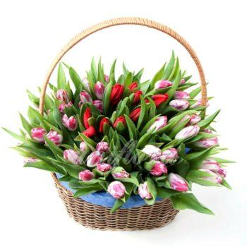 Корзина с 51 тюльпаном сиренево-крассный