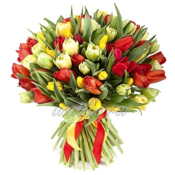 Букет из 81 тюльпана в желто-красной гамме