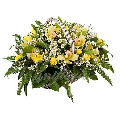 Корзина с 21 тюльпаном, ромашками и зеленью