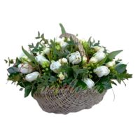 Корзина с 21 тюльпаном белого цвета