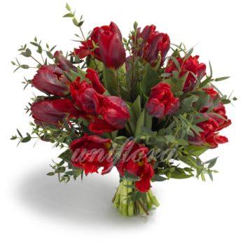 Букет из 19 бордовых тюльпанов и зелени