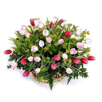 Корзина с 51 тюльпаном в красном и розовом цвете