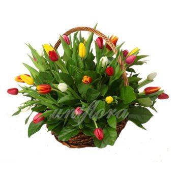 Корзина с 51 тюльпаном и зеленью