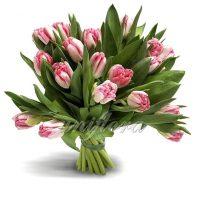 Букет из 25 розовых пионовидных тюльпанов