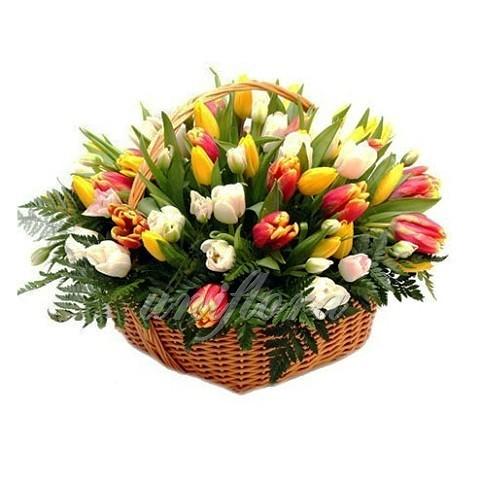 Корзина 75 тюльпанов 3х-цветный микс