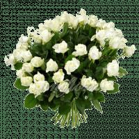 Букет из 59 белых роз | Акито (укр)