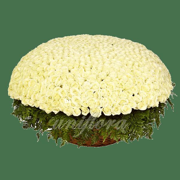 Букет из 1001 белой розы | Акито (укр)