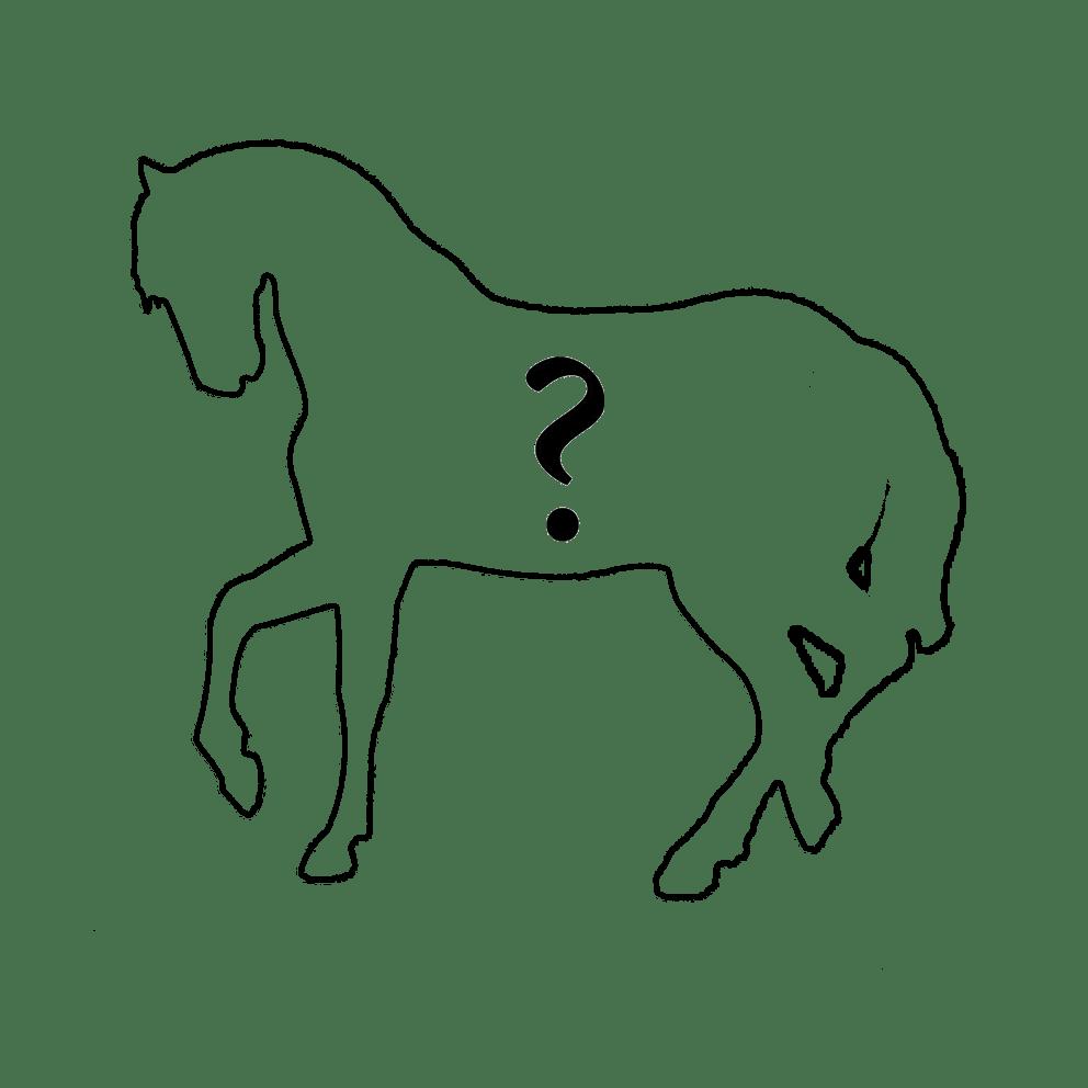 Лошадка из цветов по Вашему эскизу
