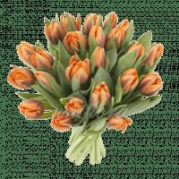Букет из 21 пионовидного оранжевого тюльпана