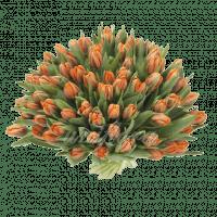 Букет из 101 пионовидного оранжевого тюльпана