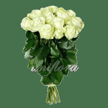 Букет из 15 белых роз | Аваланш (укр)