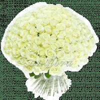 Букет из 201 белой розы | Аваланш (укр)