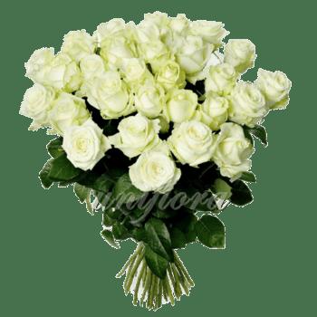 Букет из 35 белых роз   Аваланш (укр)