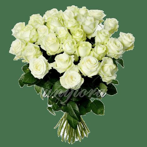 Букет из 35 белых роз | Аваланш (укр)