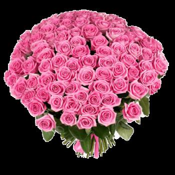 Букет из 101 розовой розы   Аква (укр)