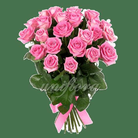 Букет из 25 розовых роз | Аква (укр)