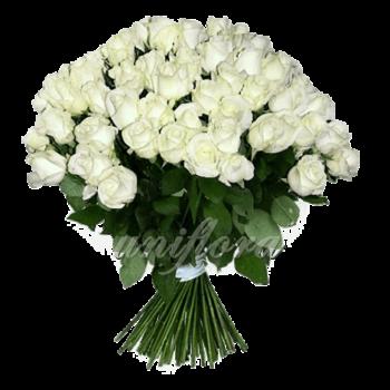 Букет из 101 белой розы | Акито (укр)