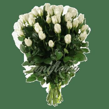 Букет из 35 белых роз | Акито (укр)