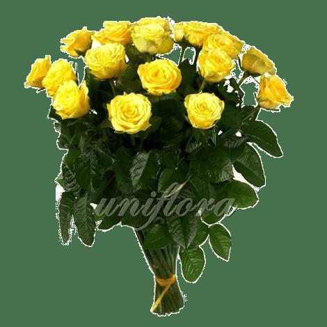 Букет из 25 желтых роз | Илиос (укр)