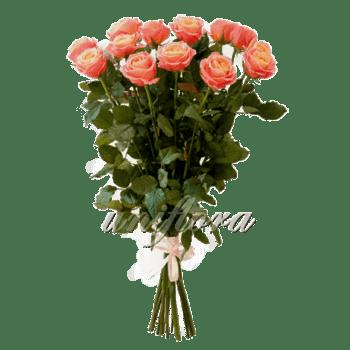 Букет из 15 персиковых роз | Мисс Пигги (укр)