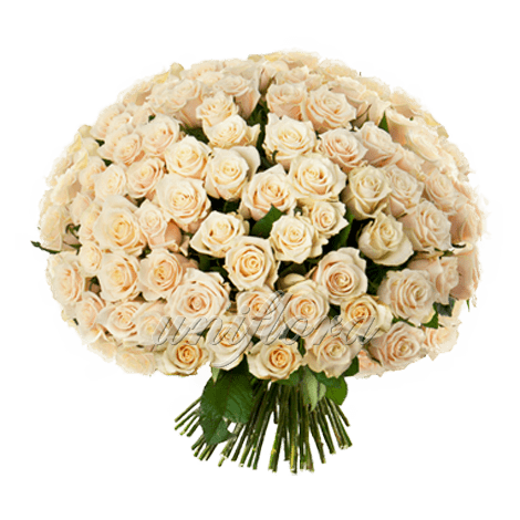 Букет из 101 кремовой розы | Талея (укр)