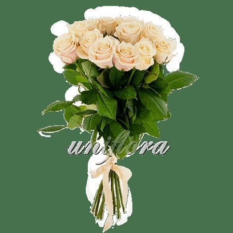 Букет из 15 кремовых роз | Талея (укр)