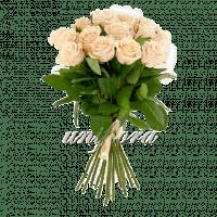 Букет из 25 кремовых роз | Талея (укр)