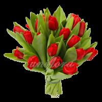 Букет тюльпанов красных