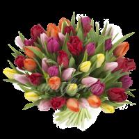 Букет тюльпанов разноцветный микс 2
