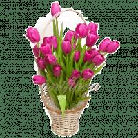 Корзина 1 29 тюльпанов-2