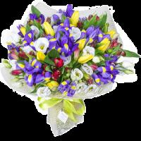 С оформлением 3 тюльпанов 9 альстромерий 25 ирисов 7 эустом высота 35-40 см-2