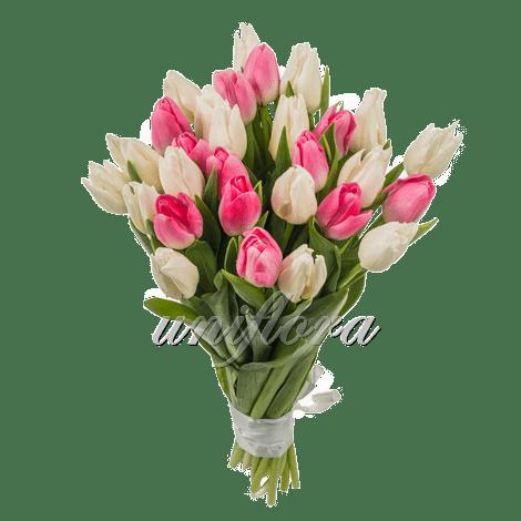 """Букет из 31 тюльпана """"микс"""""""