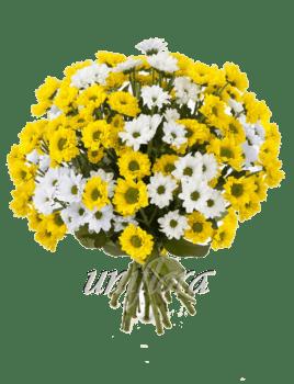 Букет из 29 веток хризантем